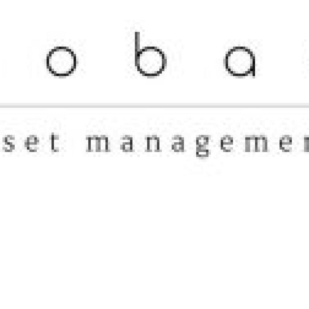 COBAS ASSET MANAGEMENT